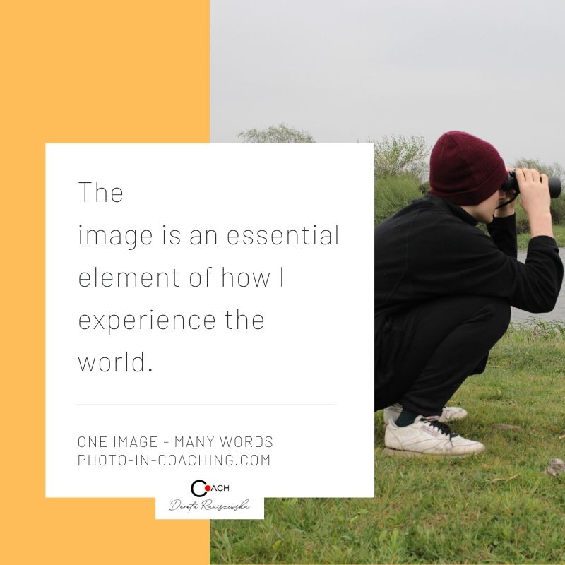 The image is an essential element of how we experience the world.